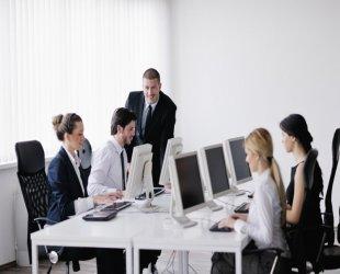 Bilgisayar Yazılım Sektörü Web Tasarımı