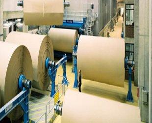 Kağıt Selüloz Sanayi Sektörü Web Tasarımı