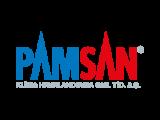 Pamsan Logo Tasarımı